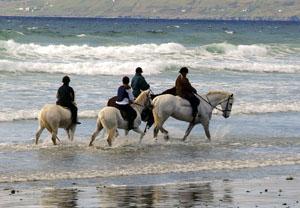 IE-LS.HorseRidingCrossStrandMayo300.27